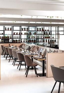 Freifrau Stuhl Romy Restaurant Wien