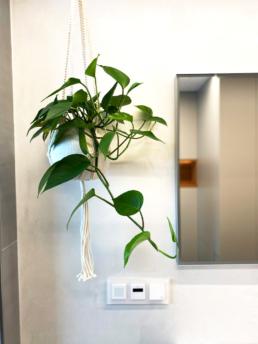 Das Baddesign erhält doch Pflanzen eine angenehme Ruhe.